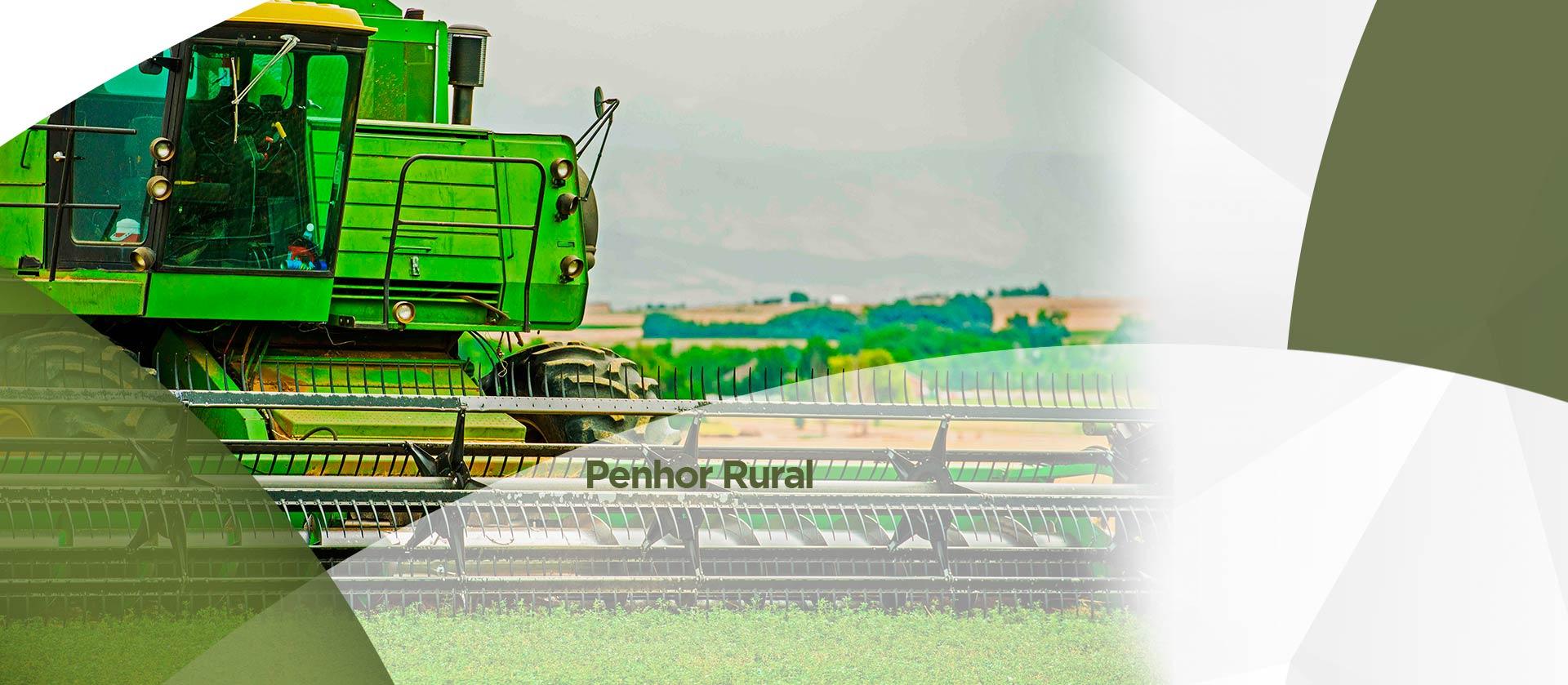 Page Penhor Rural